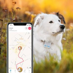 collier Tractive Tracker GPS