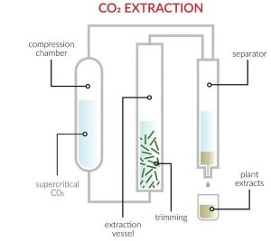 extraction-huile-cbd-co2